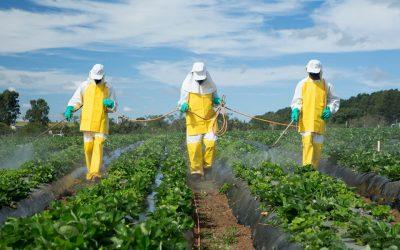 El peligroso uso de plaguicidas y agroquímicos