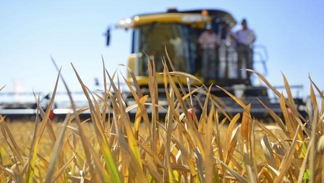 Productores y organizaciones agropecuarias fueron beneficiadas por el Ministerio de Ganadería
