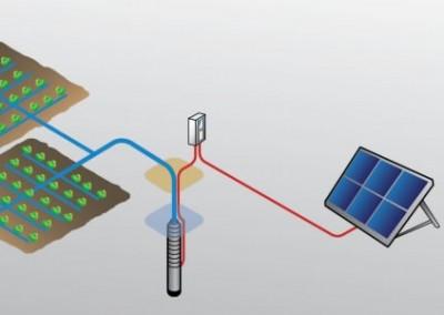 Las bombas solares son la solución perfecta para el riego: más sol = más agua.
