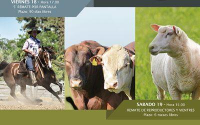Expo San Carlos – 17 al 20 de Octubre Edición 2019